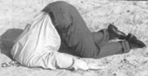 Landlord Burying Head in Sand