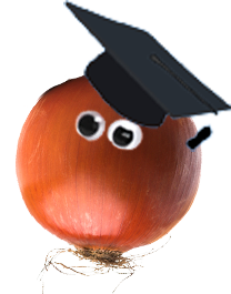 Property Refurbishment Tips - know your onions