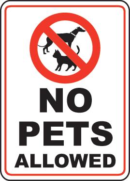 No pet policy