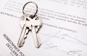 Does anyone else use licence agreements?