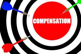 Council Tax Compensation for uninhabitable flat?