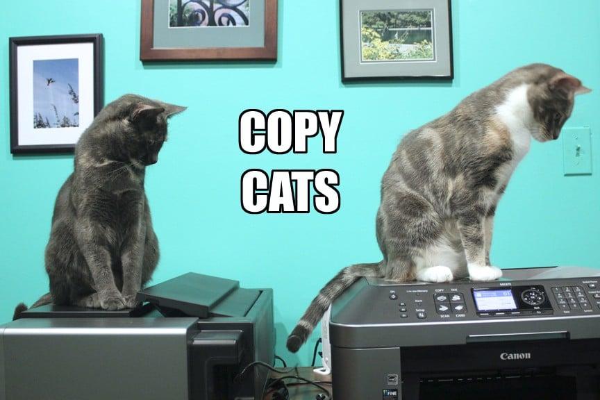 Beware BICT Copycats