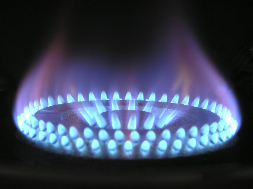 Social Landlord not prosecuted despite mass gas safety breaches!
