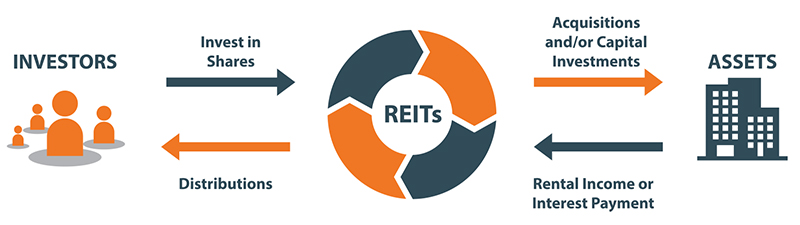reits in the uk Real-estate investment trusts (reits) could prove to be an attractive investment over the long run they are closely linked to the performance of the uk economy, since they receive rental income.