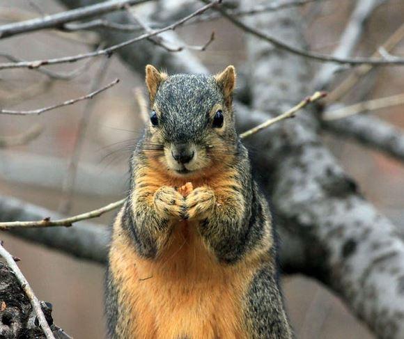 Am I going nuts? – James 'Break TheHousingMarket Shire'
