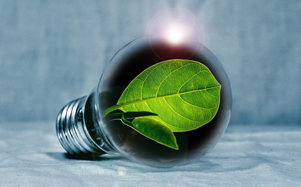 ECO Confusion – Who and what?