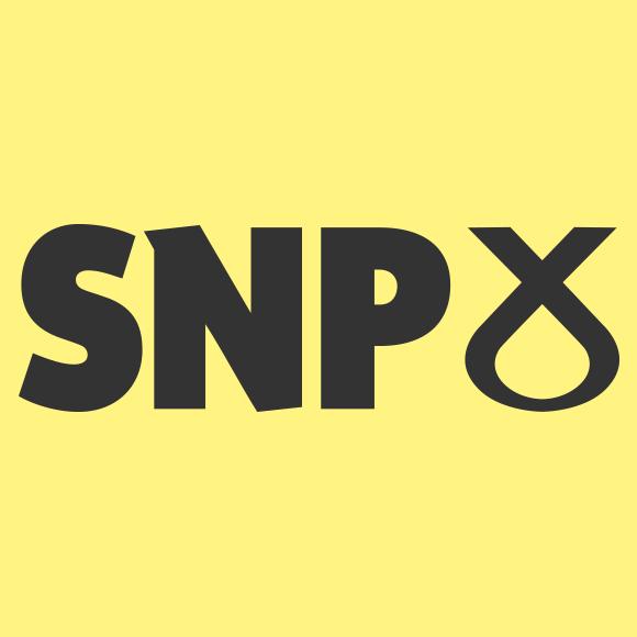 SNP Manifesto – PRS Lite