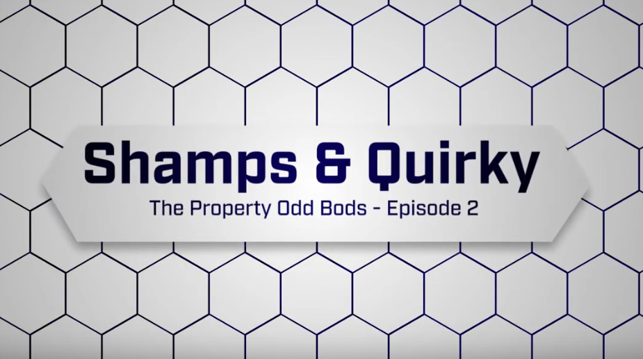 Shamps and Quirky the property odd bods